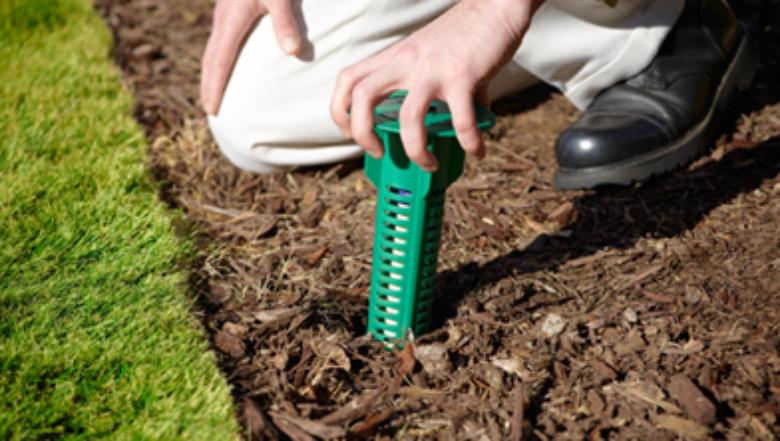sentricon termite control | Any Pest Inc