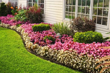 Landscaping Flowers | Summer Pest Control | Any Pest Inc.