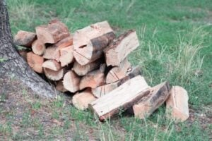 firewood pest-proofing