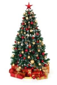 christmas-tree-pest-control