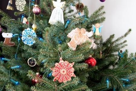 Christmas Tree Pest Free