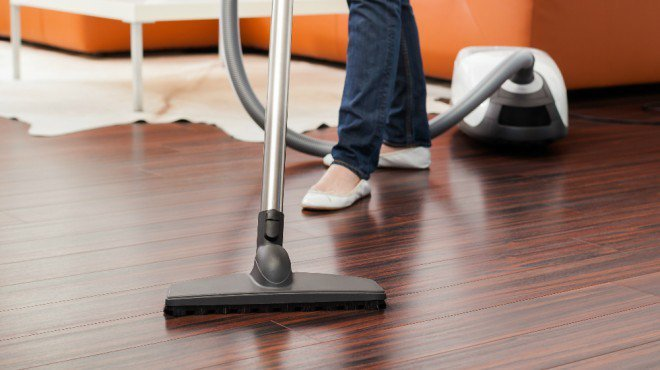 vacuuming | Any Pest Inc.