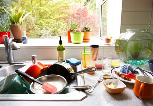 Dirty Dishes | Any Pest Inc.