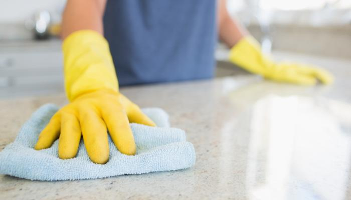 clean counter | Any Pest Inc.