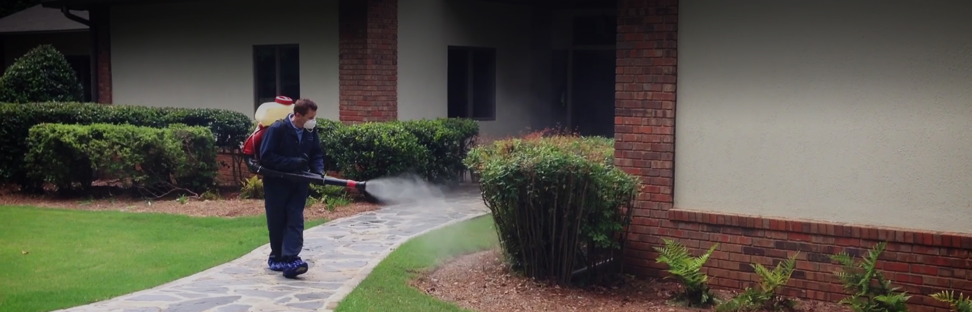 Mosquito Professional Spraying | Any Pest Inc.