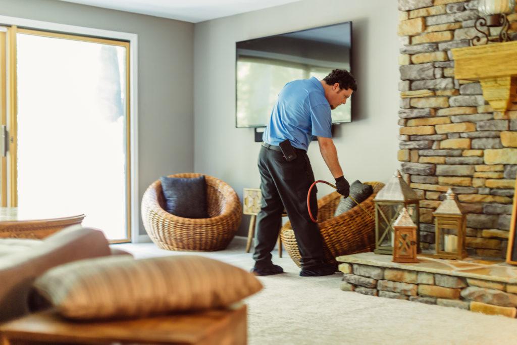 Home Pest Control   Any Pest Inc.