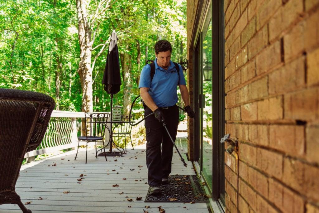 Home Fall Pest Control   Any Pest