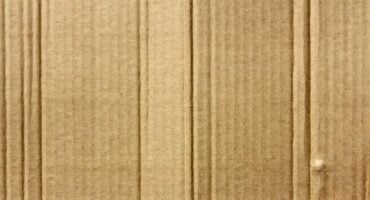 Pest-Proof Your Cardboard | Any Pest