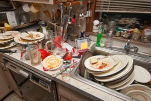 Don't Leave Dirty Dishes In The Sink | Any Pest Inc