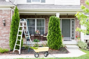 Trim Bushes and Tress Around Your House | Any Pest Inc