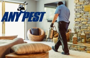 Get Ahead Of Spring Pests   Any Pest