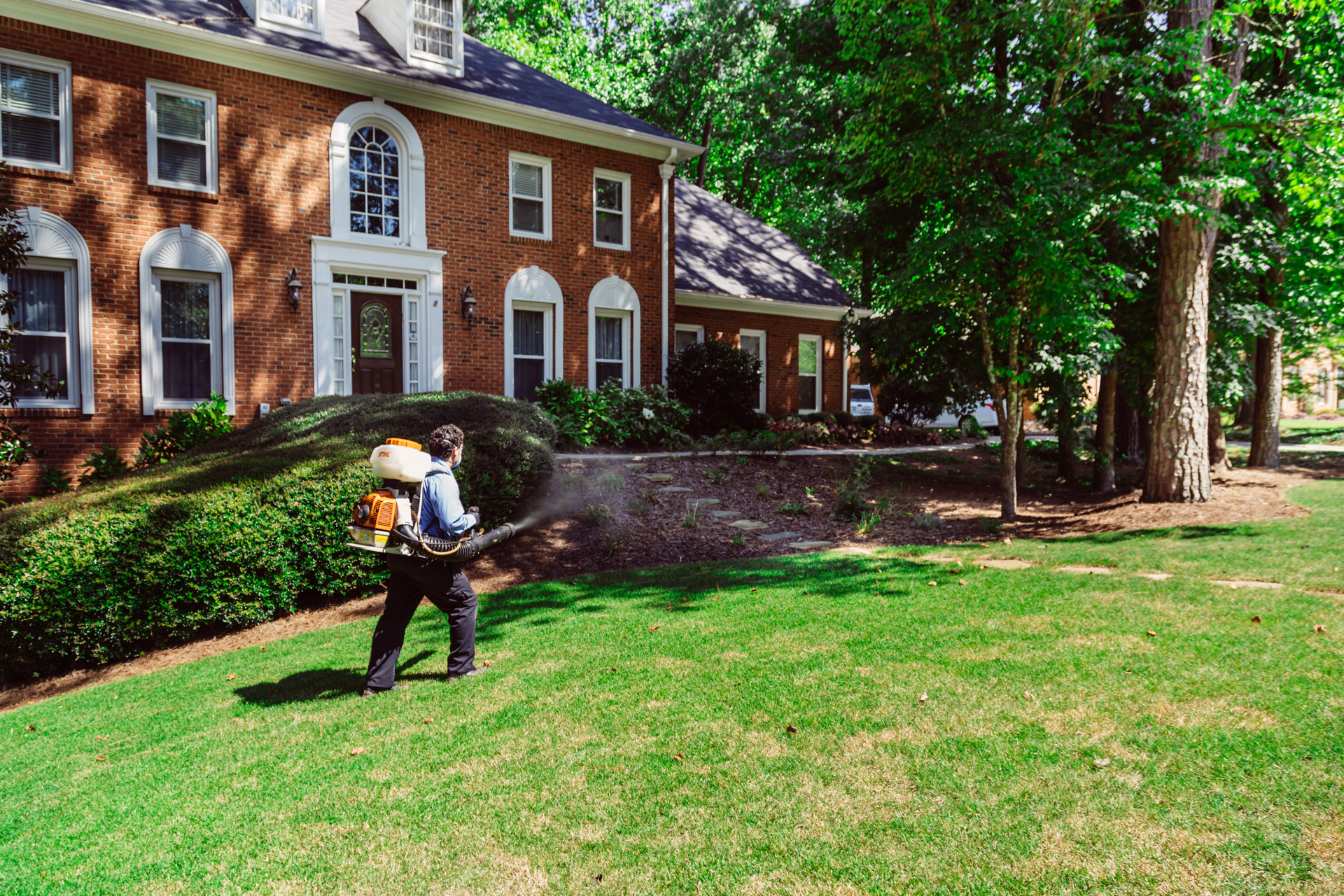 Protect Your Home and Business Against Pests